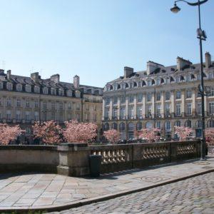 Visitez Rennes et sa région en voiture de transport avec chauffeur